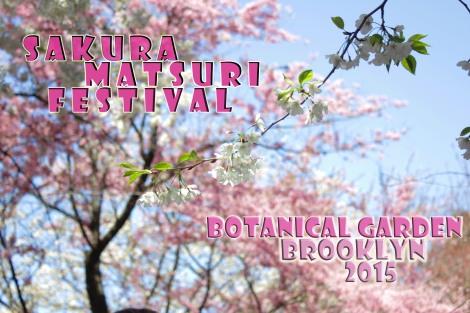 Sakura Matsuri Fest